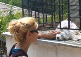Elke Kouba liebt Tiere